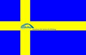 wirtschaftsdeutsch für schweden