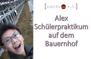 Alex Schülerpraktikum auf dem Bauernhof